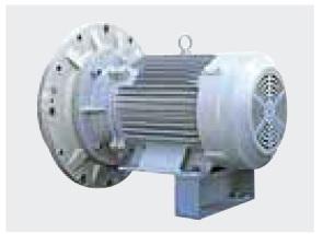 Động cơ IE3 TEFC